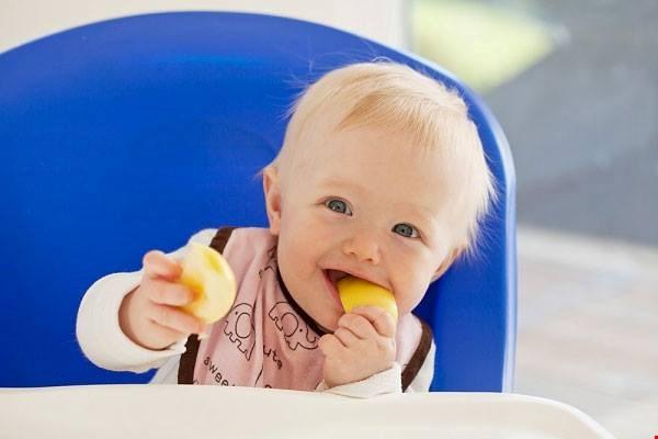 Bánh Ăn Dặm Hipp Babys Biscuit Từ Nguyên Liệu Hữu Cơ Cho Bé 6 Tháng