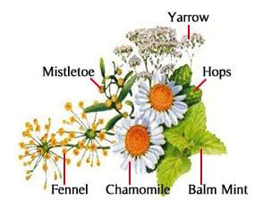 Thuốc nhuộm tóc thảo dược Bigen cung cấp Vitamin & độ ẩm với 6 tinh chất chiết xuất từ thảo dược thiên nhiên