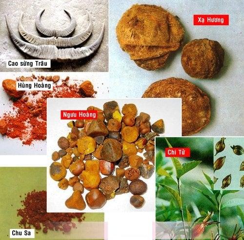 An cung ngưu hoàng được chiết xuất từ 11 vị thuốc bắc theo công thức đặc biệt của danh y Ngô Cúc Thông
