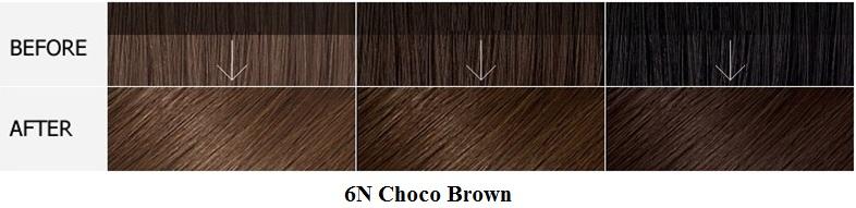 Màu 6N Choco Brown