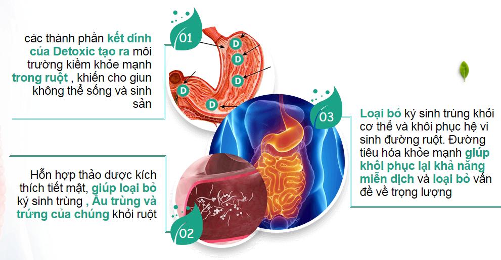 Detoxic chế phẩm diệt ký sinh trùng của Nga 20 viên (Mua 2 tặng 1)