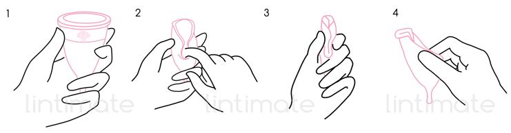 Cách sử dụng cốc nguyệt san Lincup