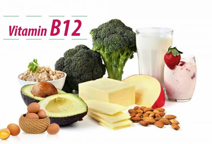 Vitamin B12 cần thiết cho việc chuyển năng lượng từ chất béo và protein, giúp cho sự hình thành, phát triển của các tế bào hồng cầu và cho sự tổng hợp DNA