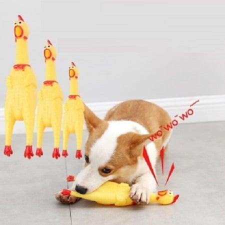 Đồ chơi chip chip con gà vàng cho chó