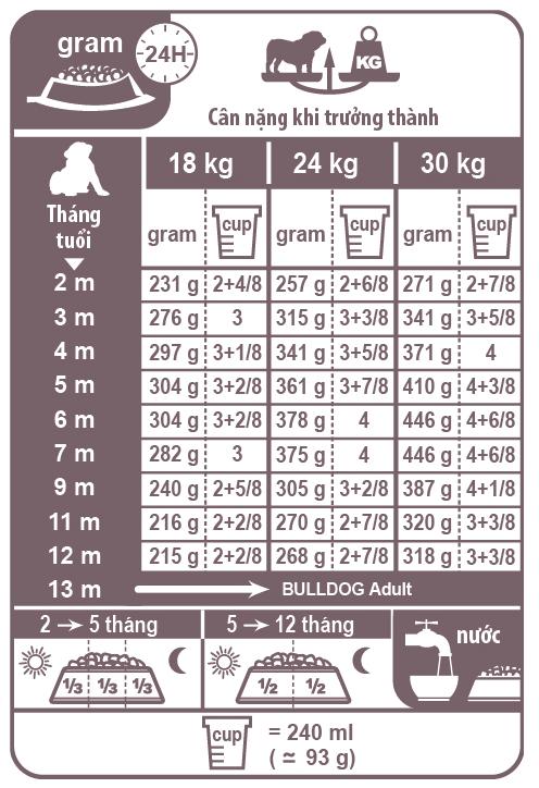 Áp dụng khẩu phần ăn phù hợp cho Bull Dog theo độ tuổi và cân nặng