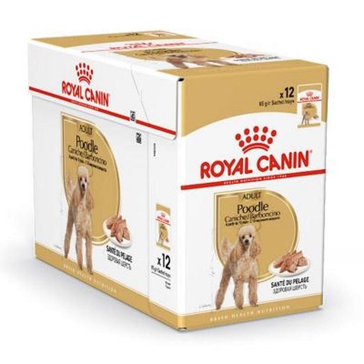 Hộp 12 gói Áp dụng khẩu phần ăn Pate cho Poodle Royal Canin Poodle Adult