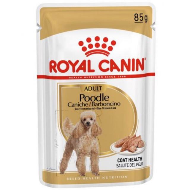 Pate Royal Canin Poodle Adult cho chó trưởng thành