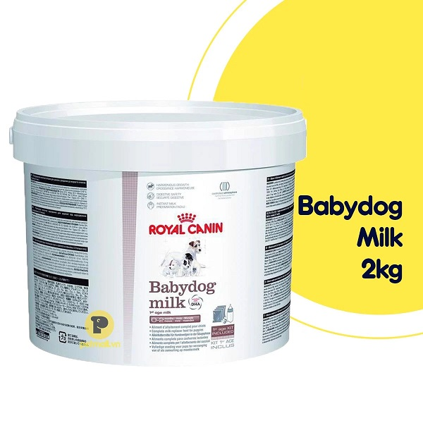 Dinh dưỡng phù hợp hệ tiêu hóa cho chó sơ sinh