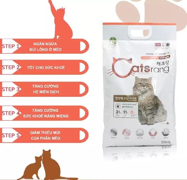 Hiệu quả chăm sóc dinh dưỡng tối ưu cho mèo