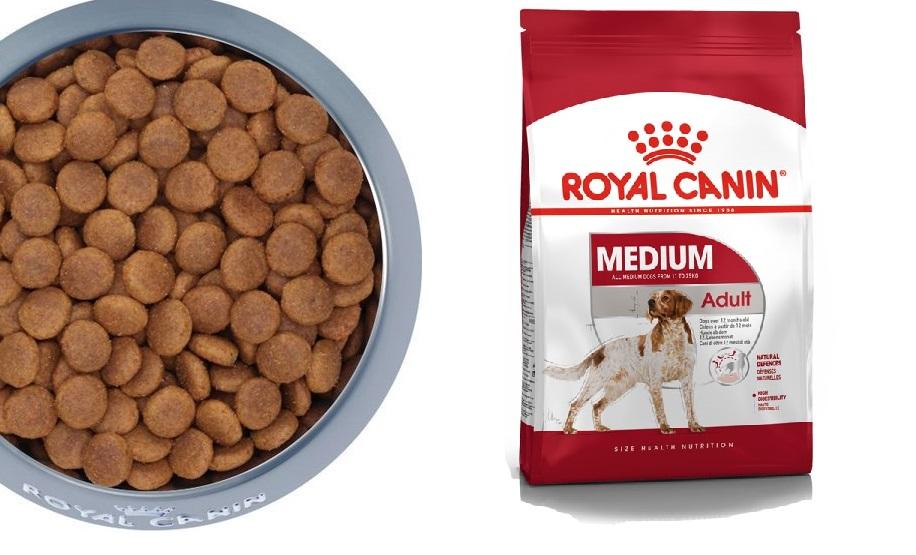 Thức ăn hạt cho chó vệ sinh, dinh dưỡng, theo độ tuổi
