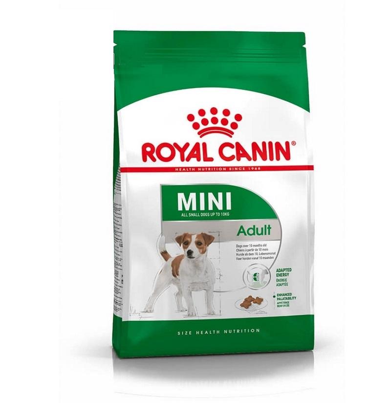 Thức ăn hạt cho chó Royal Canin Mini Adult từ 10 tháng tuổi
