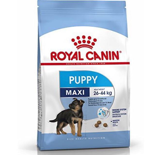 Thức ăn hạt cho chó Royal Canin Maxi Puppy