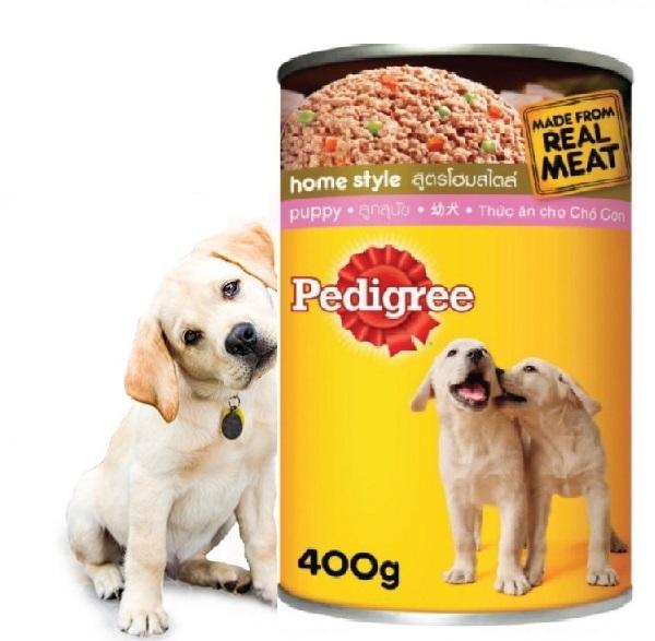 Chăm sóc dinh dưỡng toàn diện cho chó con