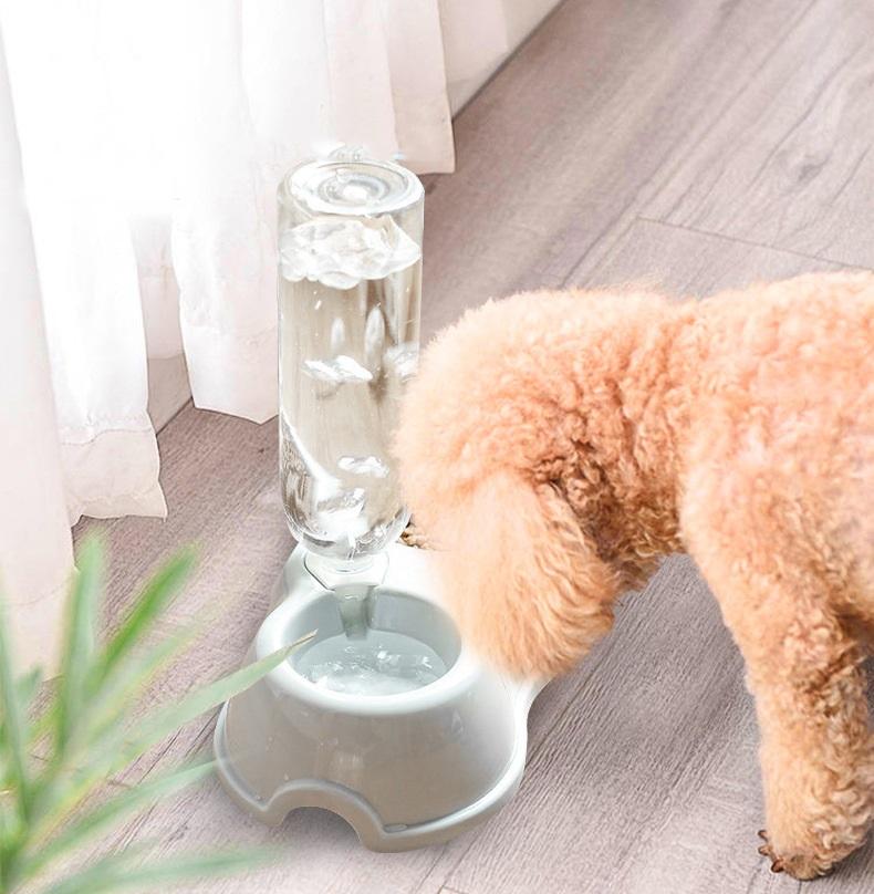 Khi sử dụng có thể cắm bình nước vào bát rất tiện lợi