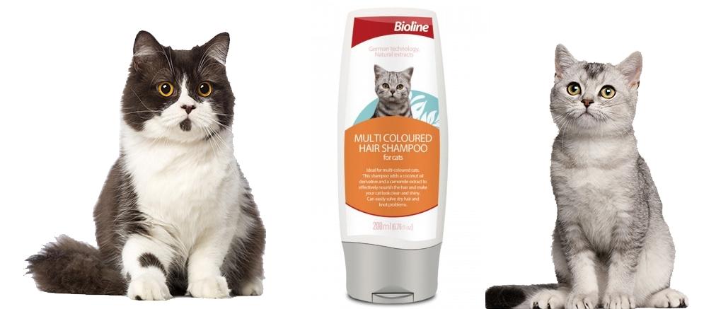 Bioline Multi coloured hair shampoo chăm sóc cho mèo lông màu