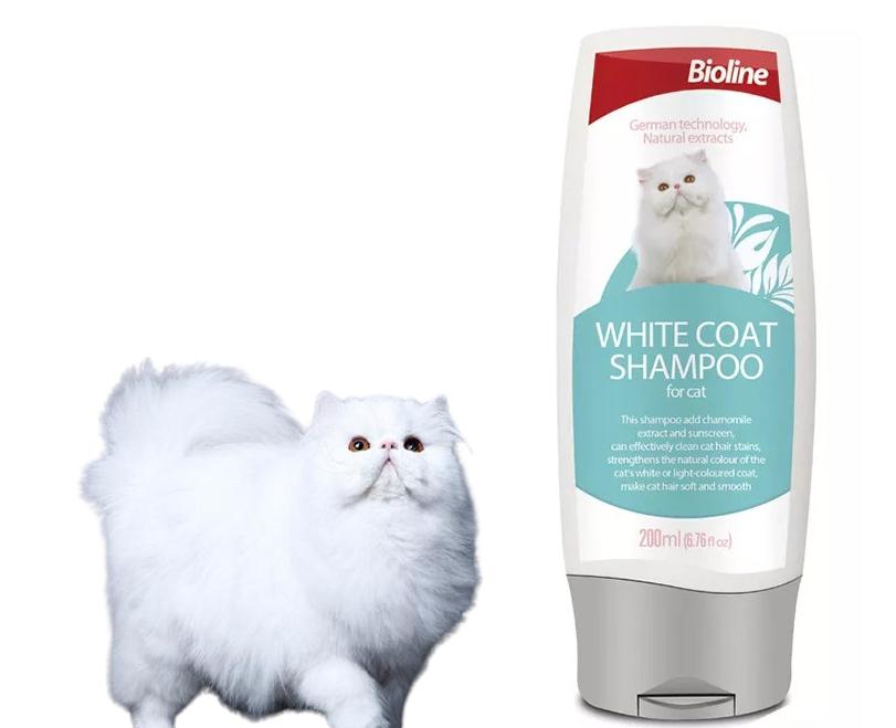 Dầu gội chăm sóc cho mèo trắng