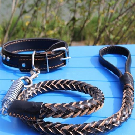 Kết hợp sử dụng cùng vòng cổ dây da cho chó