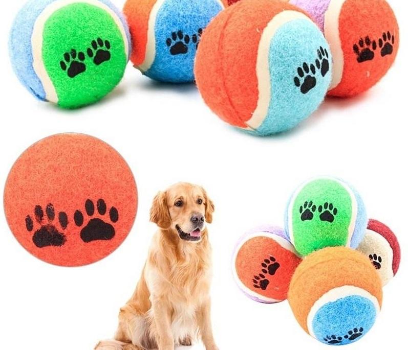 Đồ chơi bóng đá, bóng rổ huấn huyện chó mèo