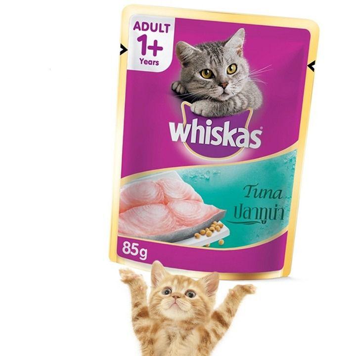 Thức ăn cho mèo trên 1 tuổi