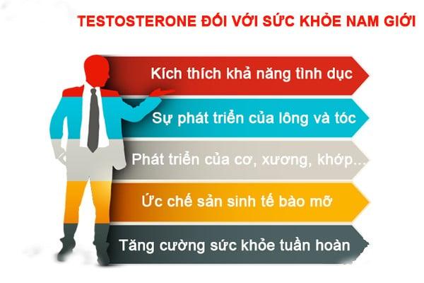 testosterone đối với sức khỏe nam giới