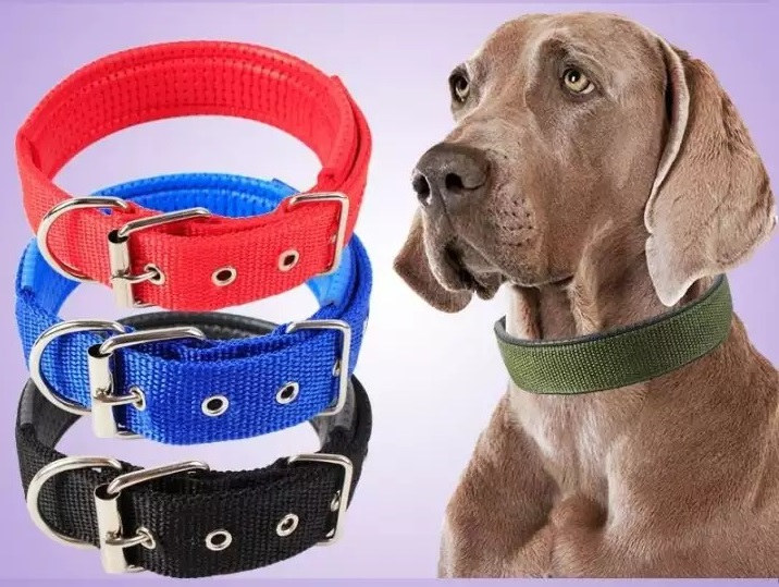 Vòng cổ đệm khóa đơn giản cho chó