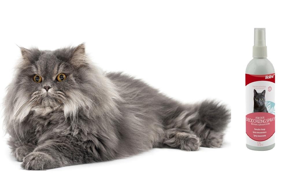 Deodorant spray for cat khử mùi không gian sống cho mèo