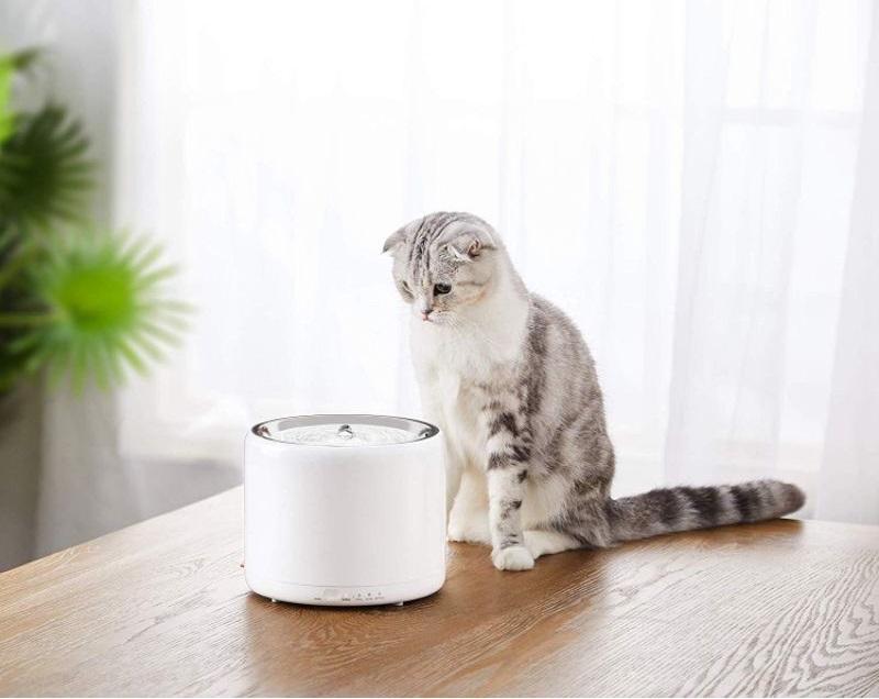 Máy uống nước cho mèo Petkit Version 3 thông minh, tự động phun