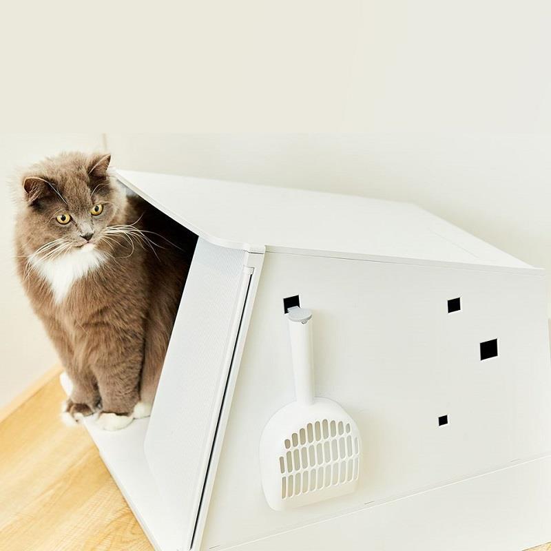 Hỗ trợ chăm sóc không gian sống cho mèo toàn diện