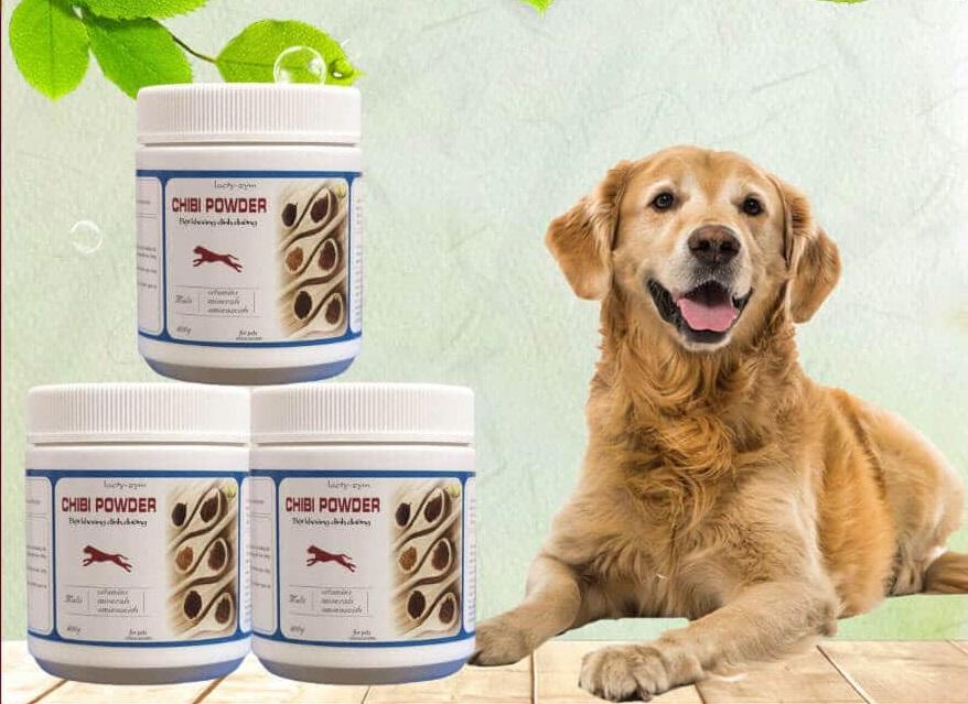Bột khoáng dinh dưỡng cao cấp Chibi Powder hỗ trợ chó tăng cường sức khỏe và khả năng vận động
