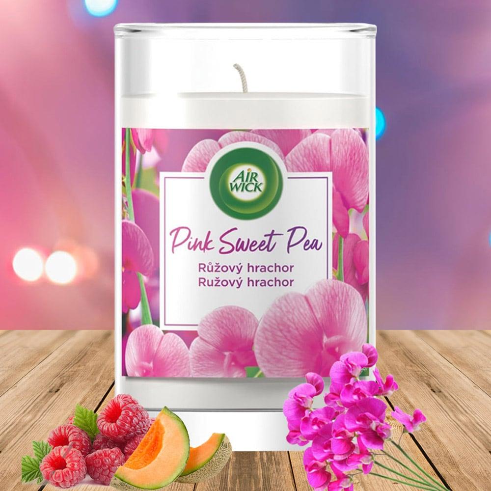 Ly nến thơm tinh dầu Air Wick 310g QT06524 hoa đậu Hà Lan 1