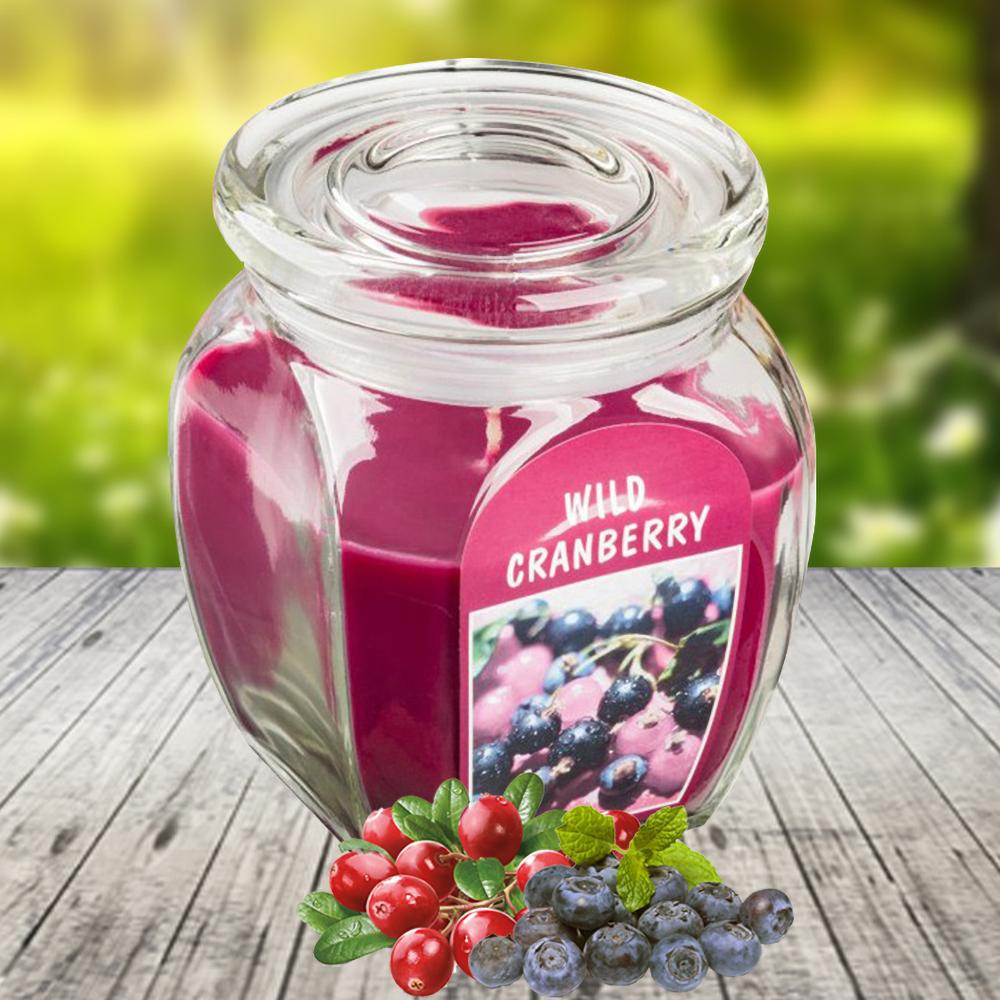Hũ nến thơm tinh dầu Bolsius 305g QT024365  hương việt quất 1