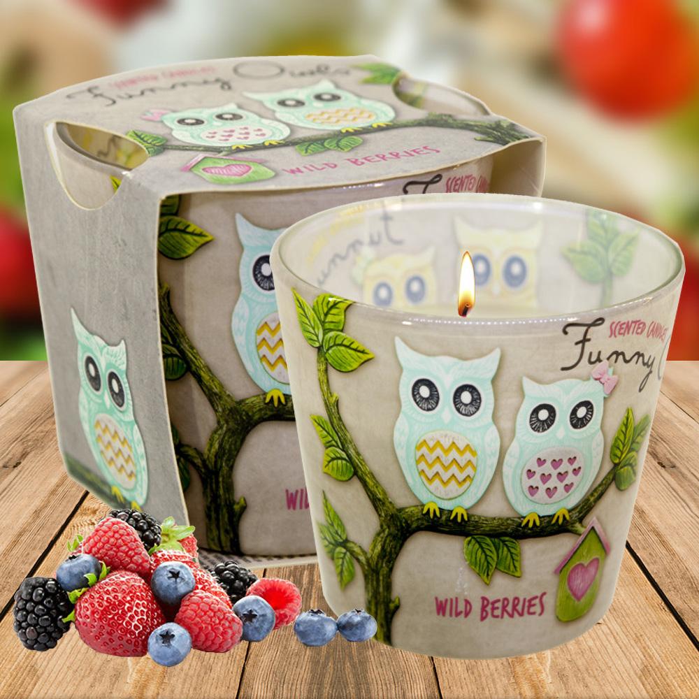 Ly nến thơm tinh dầu Bartek 115g QT00668 hương quả ngọt 2