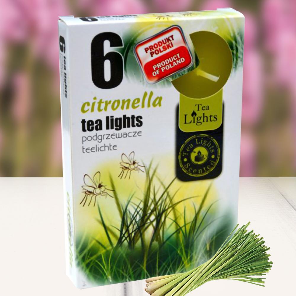 Hộp 6 nến thơm tinh dầu Tealight QT026841 hương sả chanh 1