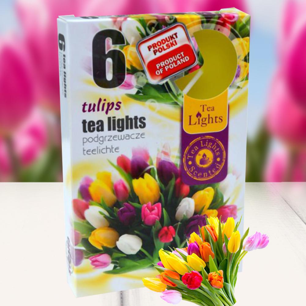 Hộp 6 nến thơm tinh dầu Tealight QT026054 hương hoa tulips 1