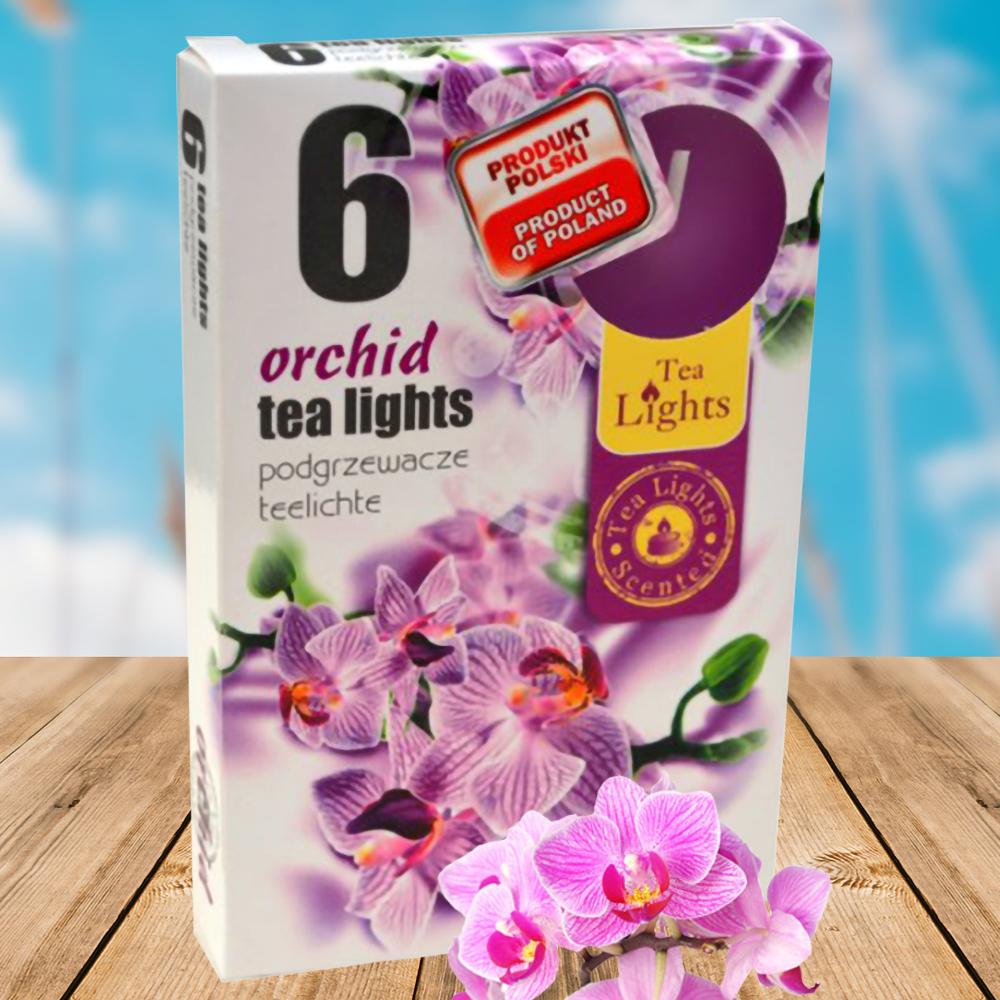 Hộp 6 nến thơm tinh dầu Tealight QT026069 lan hồ điệp 1