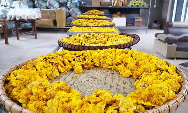 Trà Hoa Vàng Mộc Sắc, Siêu Thị Thiên Nhiên 3