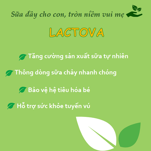 Viên uống lợi sữa Lactova hỗ trợ tăng tiết sữa thông tuyến sữa 1